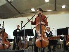 Steven Sharp Nelson Jammin Live! The Cello Song!