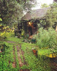 Image By Ricocotan Moon Garden, Enchanted Garden, Garden Gates, The Ranch, House Front, Garden Styles, Farm Life, Garden Inspiration, Garden Design