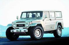 Toyota LandCruiser custom