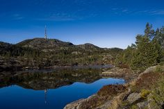 Knuten, Kongsberg by jarud, via Flickr Norway, Places Ive Been, Places To Visit, Spaces, Explore, Water, Outdoor, Gripe Water, Outdoors