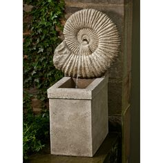 Ammonite Fountain      The Ammonite Fountain features a large Ammonite shell as the top piece of the fountain. Water trickles from the center of the shell down into a basin below. This unique fountain is charming and distinct, and is part of the Campania cast-stone collection. This fountain is not sealed, which allows it to develop a natural aged look over time.