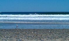Scarborough Beach State Park in Scarborough, ME