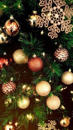 sapins, have yourself a merry little Christmas ! Christmas Mood, Noel Christmas, Merry Little Christmas, Christmas Bulbs, Christmas Decorations, Holiday Decor, Holiday Wallpaper, Winter Wallpaper, Christmas Lockscreen