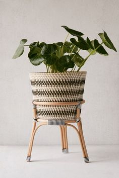 Woven Plant Basket Size: 11 x 11 Modern Floor Basket Planter with Handles Common Decor Plant Basket for 10 inch Plant Pots Indoor Beautiful Indoor Planter Basket