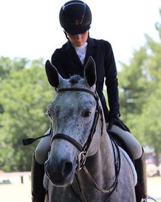 """""""The formula for success is simple: pratice and concentration. Then more practice and more concentration""""  #equestrian#KASK #horse#equestrianperformance"""