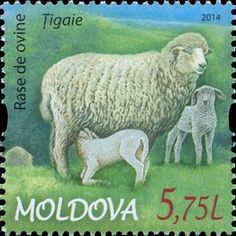 Issued in 2014, Moldova