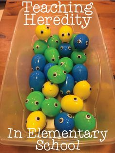Teaching heredity in
