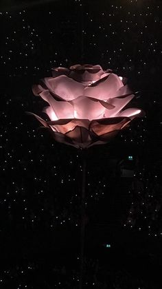 Shawn Mendes Concert, Shawn Mendes Imagines, Aesthetic Backgrounds, Aesthetic Wallpapers, Cameron Alexander Dallas, Shawn Mendes Wallpaper, What Is Like, My Love, Photo Wall Collage