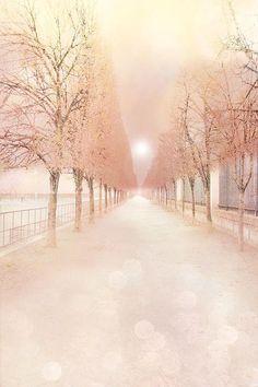 Paris Dreams by Kathy Fornal