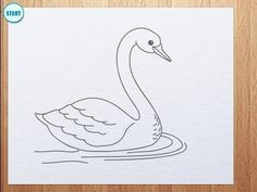 How to draw swan Swan Drawing, Basic Drawing, Drawing Skills, Drawing Lessons, Drawing Techniques, Drawing For Kids, Drawing Sketches, Drawing Tips, Sketching