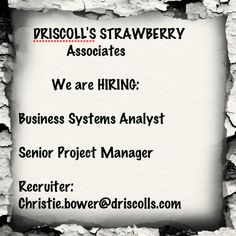 the corralitos nursery hiring a production inventory analyst for driscolls jobs im hiring pinterest