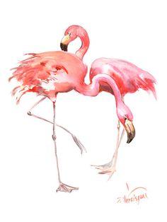 Animals, Photos and Prints at Art.com