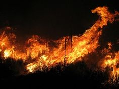 How To Make Your Content Marketing Spread Like Wildfire
