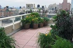 Image result for Terraces, Balconies, Roof Gardens