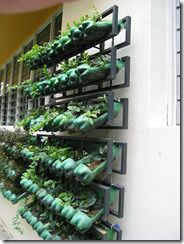 vertical garden bottles