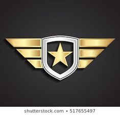 silver gold military star and shield with wings