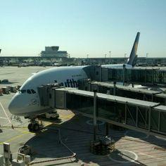 Ioana @ Frankfurt Airport (FRA)