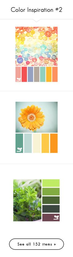"""""""Color Inspiration #2"""" by lavenderwine ❤ liked on Polyvore featuring design seeds, colors, backgrounds, color palettes, color schemes, palettes, pallets, color scheme, color inspiration and pictures"""