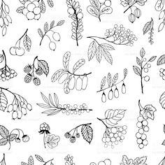 Seamless background garden and wild hand-drawn sketch berries royalty-free stock vector art