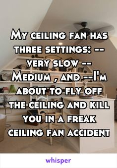 My ceiling fan has three settings: -- very slow -- Medium , and --I'm about to fly off the ceiling and kill you in a freak ceiling fan accident