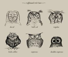 Caffeinated Owl Chart :)