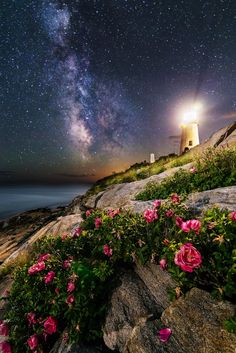 ~~The Roses of Pemaquid Point | Milky Way skies at the lighthouse, New Harbor, Maine by Jon Secord~~
