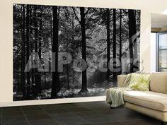 Avalon Landscapes Wallpaper Mural - 366 x 254 cm