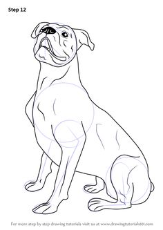 learn how to draw a boxer dog farm animals step by step drawing