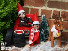 Elf on the Shelf Ideas | Elves Reindeer Pickup Truck | The Elf on the Shelf®