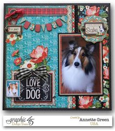 A brilliant Raining Cats & Dogs layout by Annette Green of her fabulous Suki #graphic45