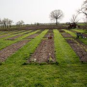Realizarea grădinii de la țară