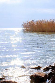 Balaton, Magyarország - Lake Balaton, Hungary #balaton #magyarország #lake #hungary #nyár #summer #utazás #travel