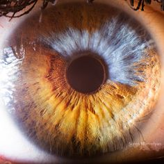 If you hadn't noticed, human eyeballs can be some of the most intriguing and beautiful objects in the world. Have you ever looked into someone's eyes and simply lost yourself in the intricate and complex patterns that weave themselves around the iris? 'Your Beautiful Eyes' is a stunning collection of close-up photographs taken by photographer Read More