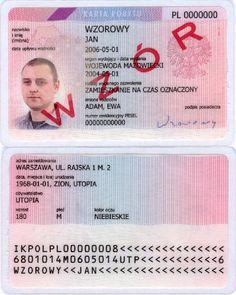 Робота в Польщі. Як отримати карту побиту? | Time2Go.com.ua