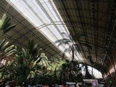 Binnen in het station is een botanische tuin met horeca gemaakt