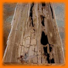 IndoGemstone Petrified Wood Table Top