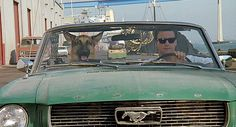 James Belushi, K-9 Well Images, 1980s Films, Movies, Style, Swag, Films, Cinema, Movie, Film