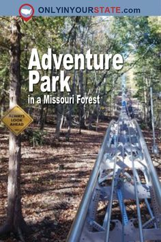 Take a trip to Branson and cruise through the Ozark Mountains on this single cart roller coaster. Branson Vacation, Vacation Trips, Dream Vacations, Vacation Ideas, Weekend Trips, Day Trips, Weekend Getaways, Solo Travel, Travel Usa