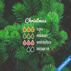 Cough and Cold - Essential Oil Diffuser Blend: tried six drops peppermint, six drops lavender, two drops tea tree and two drops eucalyptus Essential Oil Diffuser Blends, Doterra Essential Oils, Young Living Oils, Young Living Essential Oils, Diffuser Recipes, Perfume, Aromatherapy Oils, Aromatherapy Recipes, Just In Case