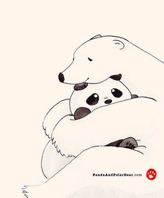 Hug by Panda And Polar Bear