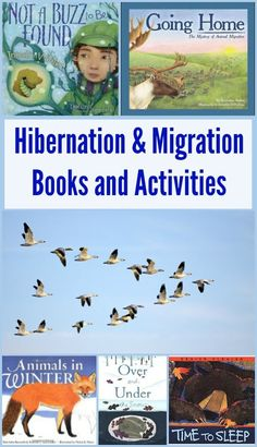 Combine nature and science with these great books and hands-on activities that teach preschool and kindergarten kids about hibernation, migration, adaptation and what animals do in Winter!