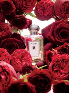 Jo Malone™ Red Roses Cologne | The essence of modern romance. A voluptuous blend of seven of the world's most exquisite roses. With crushed violet leaves and a hint of lemon, it unfolds like a bouquet of freshly cut flowers. Surprisingly clean and sheer.