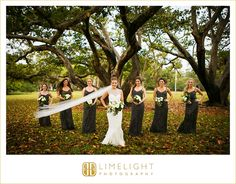 wedding day, bride, veil, bride's maids, grey dresses, sparkly dresses, bridal party, limelight photography, www.stepintothelimelight.com