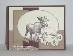 Walk in the Wild Birthday by shoogendoorn - Cards and Paper Crafts at Splitcoaststampers