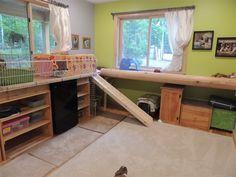 Mocha and Lulu's Dream Cage! - BinkyBunny.com - House Rabbit Information Forum - BinkyBunny.com - BINKYBUNNY FORUMS - HABITATS AND TOYS