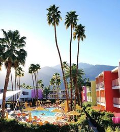 Gorgeous view of @thesaguarops #ModernismWeek #palmsprings
