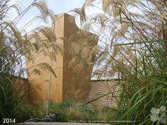 Festivaltuin 'De Goudduivel' – Festival Garden 'The Devil possessed by Gold'. Design: Jacqueline Volker www.lifestyleadviseur.nl  Image: Frans de Jong. Location: De Tuinen van Appeltern – Holland.