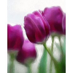 Digital photography,#ol230,oil painting,spring flower,photographic... ($39) ❤ liked on Polyvore featuring home, home decor, wall art, oil painting, flower wall art, spring home decor, flower oil painting and floral wall art