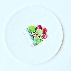 Mackerel, English peas, cherries and capucine. #instafood #TheArtOfPlating #foodporn #foodstagram #yummy #kitchen #chef #chefstalk #chefsroll #foodphotography #gastroart #foodart #expertfoods #ChefOfInstagram #gastronomia #foodshoot #foodpic #chefsplatefo