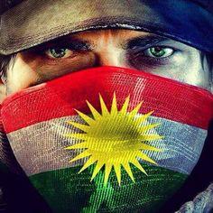 nice flag kurdistan